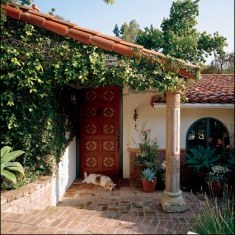 Южный дворик для барбоса