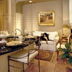 Интерьер кухни. совмещенной с гостиной