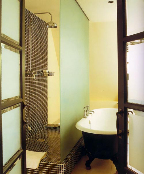 Совмещение ванны и душа в ванной комнате