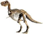 Плитка с настоящими фрагментами скелета динозавра